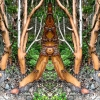 Suite Two: Enchanted Forest Stuart Island